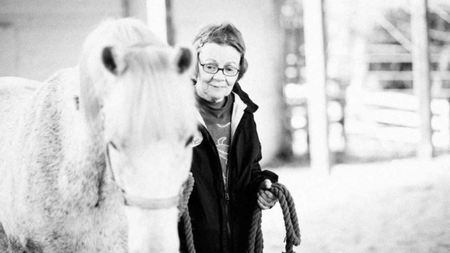 Rio-Lynne Hug a Horse Programs for seniors
