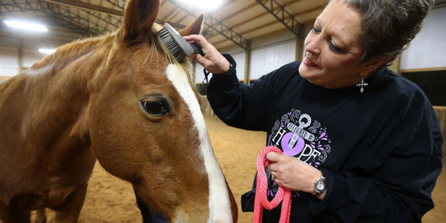 Breast cancer patients use horses for therapy
